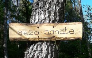 Meža sonāte